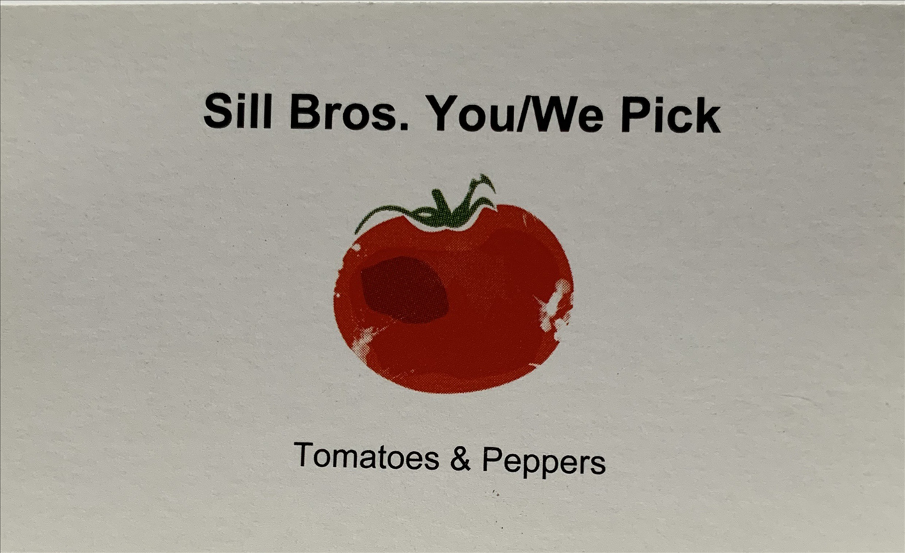 Sill Bros. U-Pick Tomatoes and Peppers