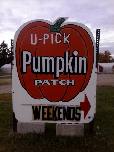 Pregitzer Farm Market Pumpkin Patch