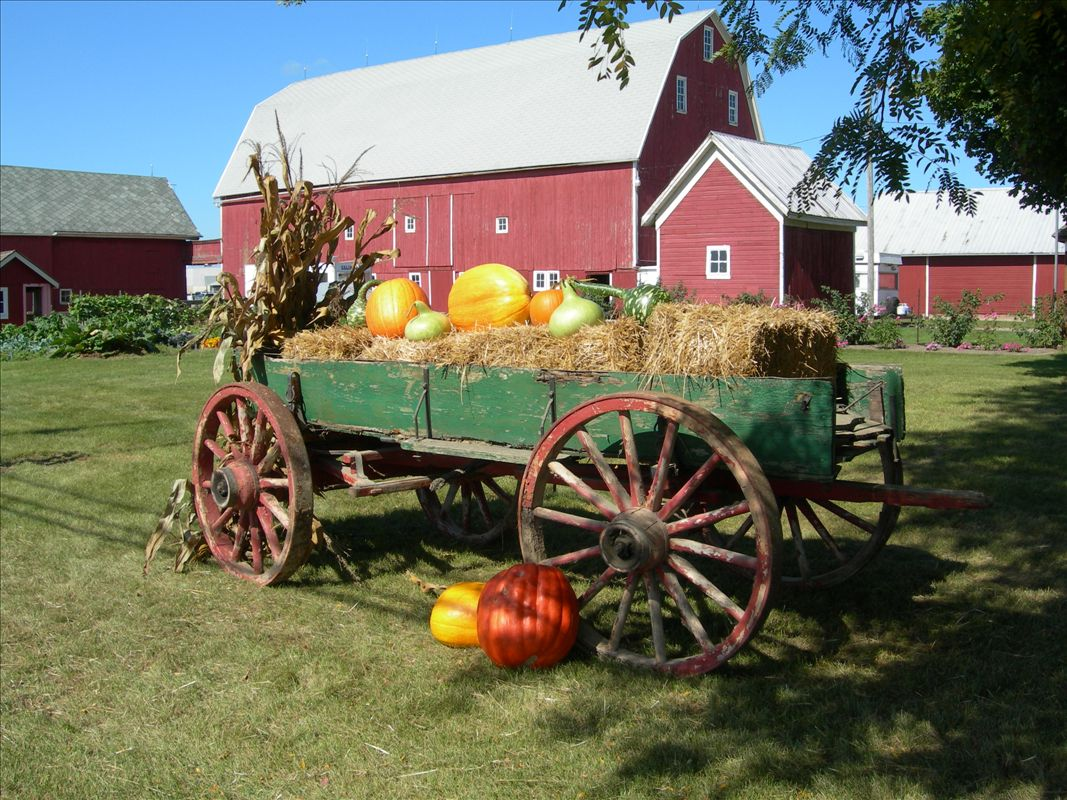connect with your heritage michigan farm fun